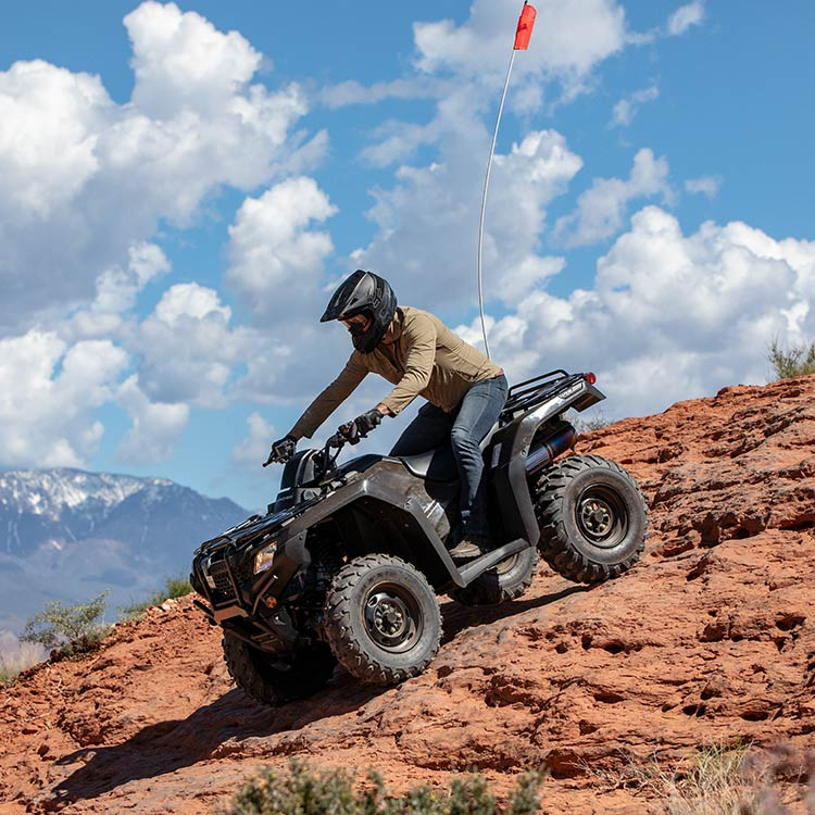 Gallery - FourTrax Rancher 3