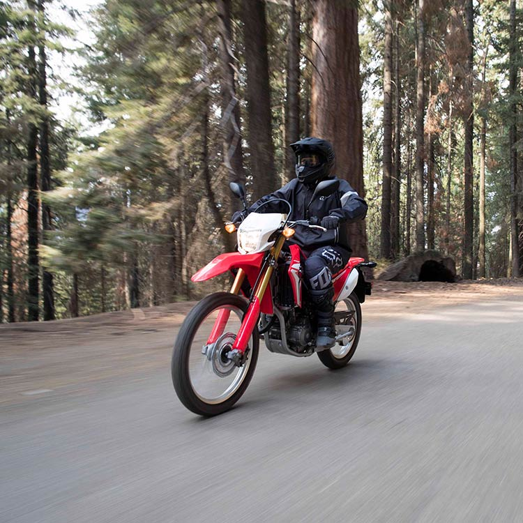 Gallery - CRF250L 1