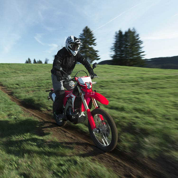 Gallery - CRF450L 0