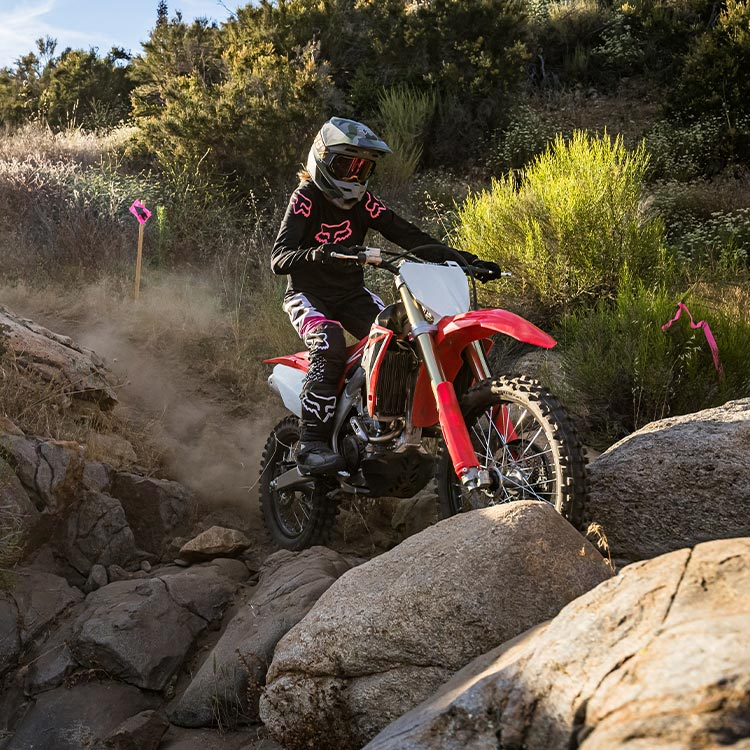Gallery - CRF250RX 5