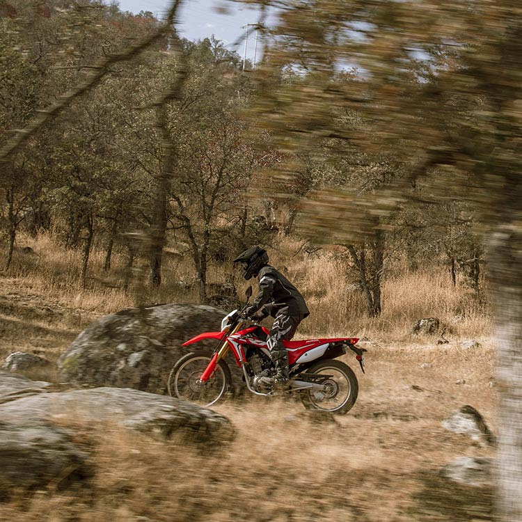 Gallery - CRF250L 5