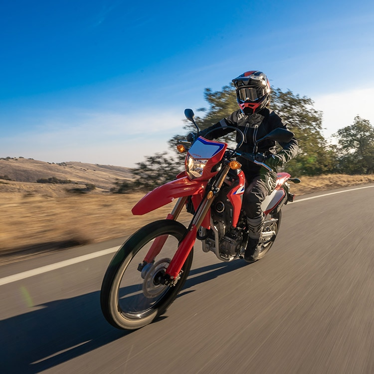 Gallery - CRF300L 0