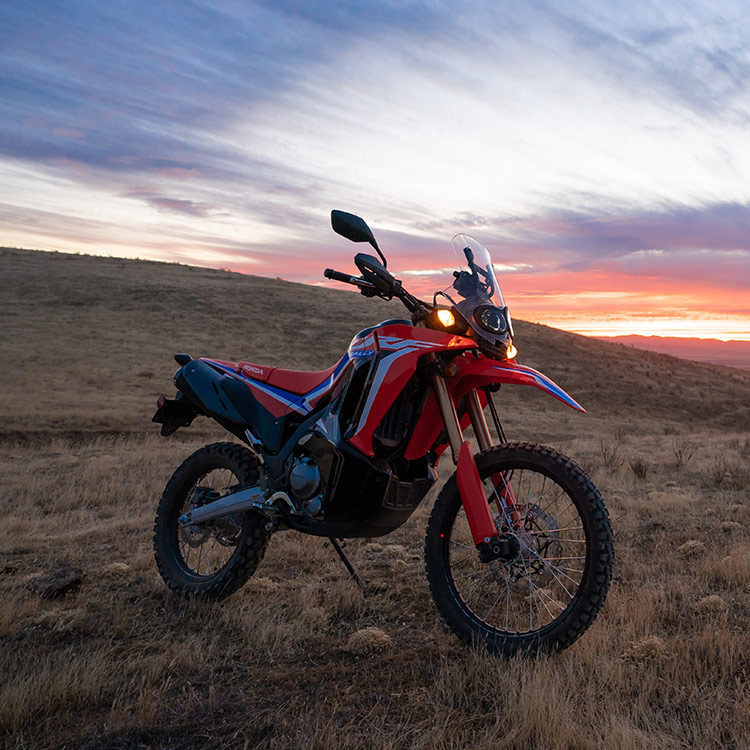Gallery - CRF300L Rally 0