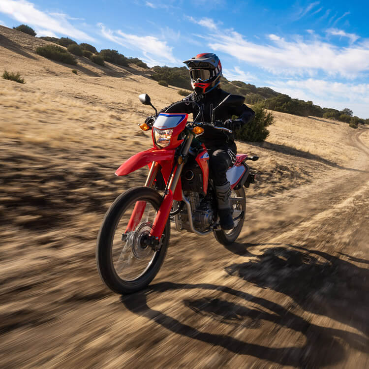 Gallery - CRF300L 3