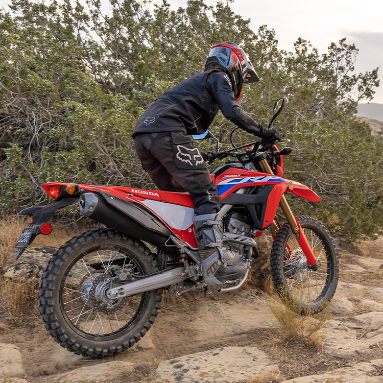 Gallery - CRF300L 4