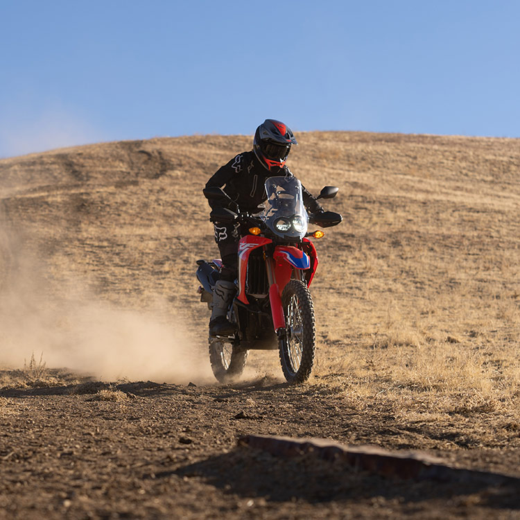 Gallery - CRF300L Rally 5